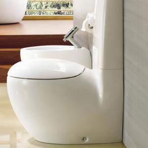 2 Piece Toilet Bowls