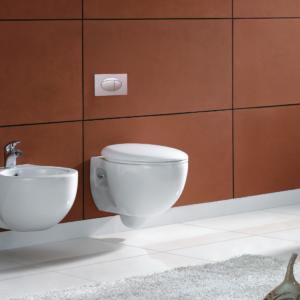 Wall Hung Toilet Bowls