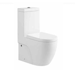 1 Piece Toilet Bowls